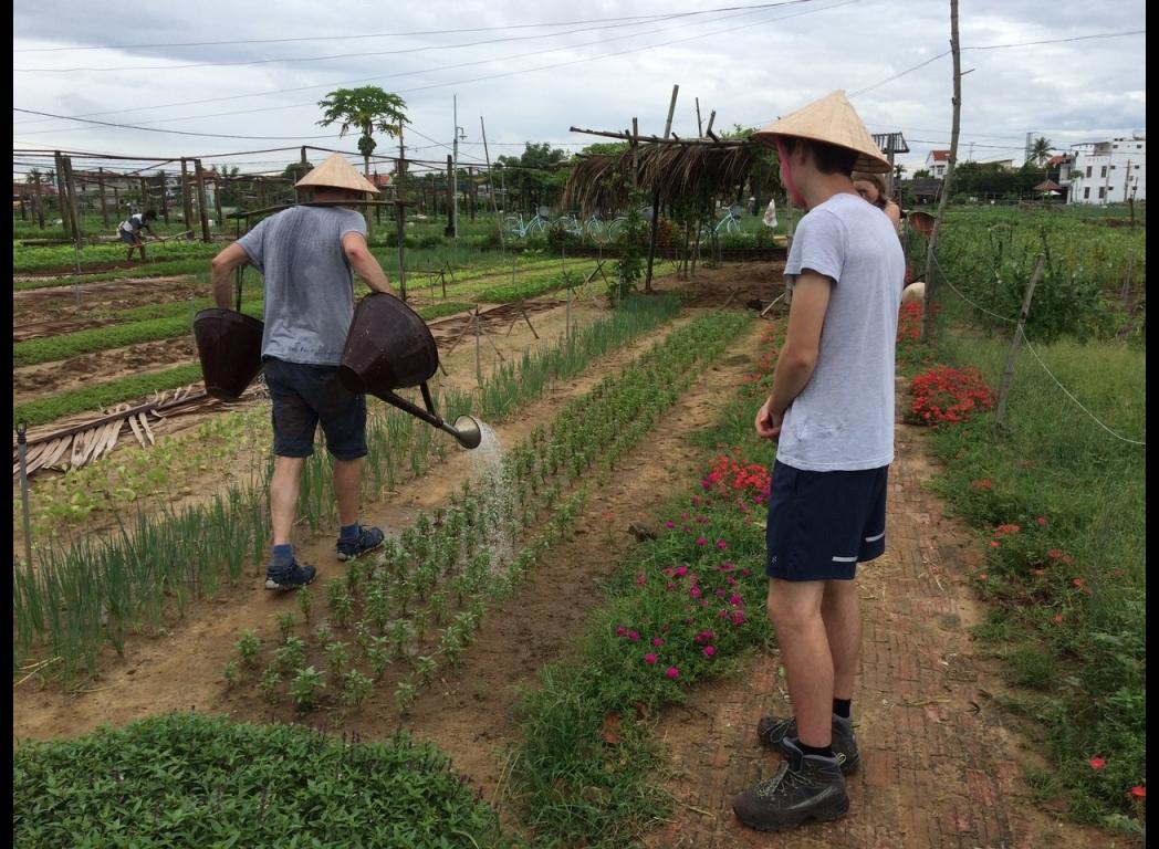 styding farmer activity